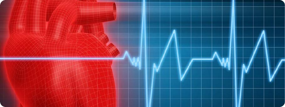 LBW-Training-Center-Acute-Courses-Heart-EKG